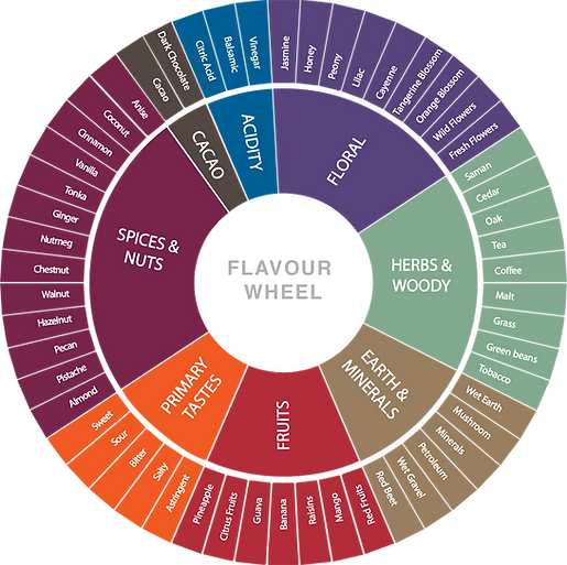 venezuelan cacao flavour wheel