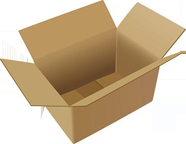 Caja N° 31