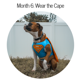 Month 6: Wear Your Cape