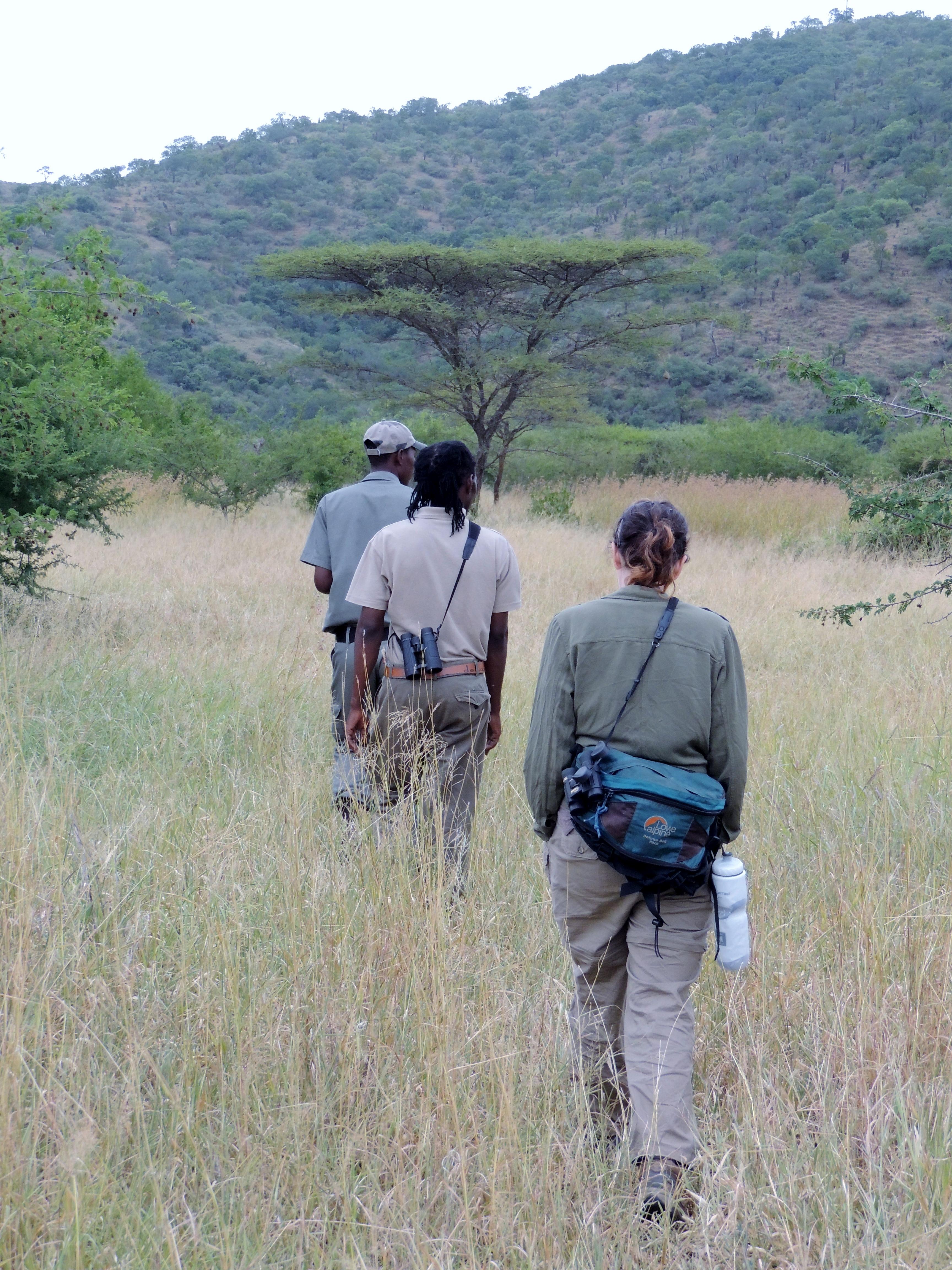 Sindisa Fund's VP tracking rhinos
