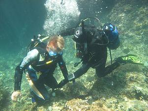 diving-9.jpg