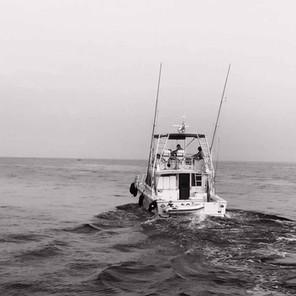Fisherman 44