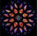 Robert Fertitta rose window