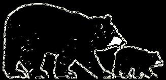Bear-Logo-LL-TRANSPARENT.png