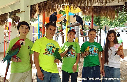 Children holding tropical birds at Parrot Mountain and Gardens in Pigeon Forge