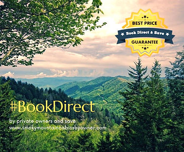 Book Direct by VH brighter.jpg