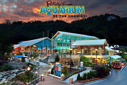 Ripley's Aquarium of the Smokies in Gatlinburg Tennessee