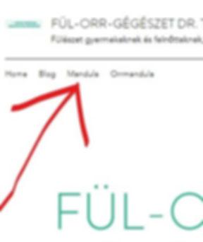 InkedMenü_LI_edited.jpg