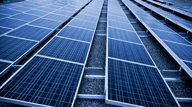 Nuovo impianto per Allontanare i Piccioni dall'impianto Fotovoltaico