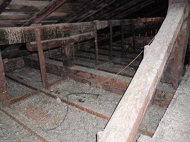 pulizia ed asporto guano di piccione da tetti e sottotetti.Disinfestazione da zecche di piccione