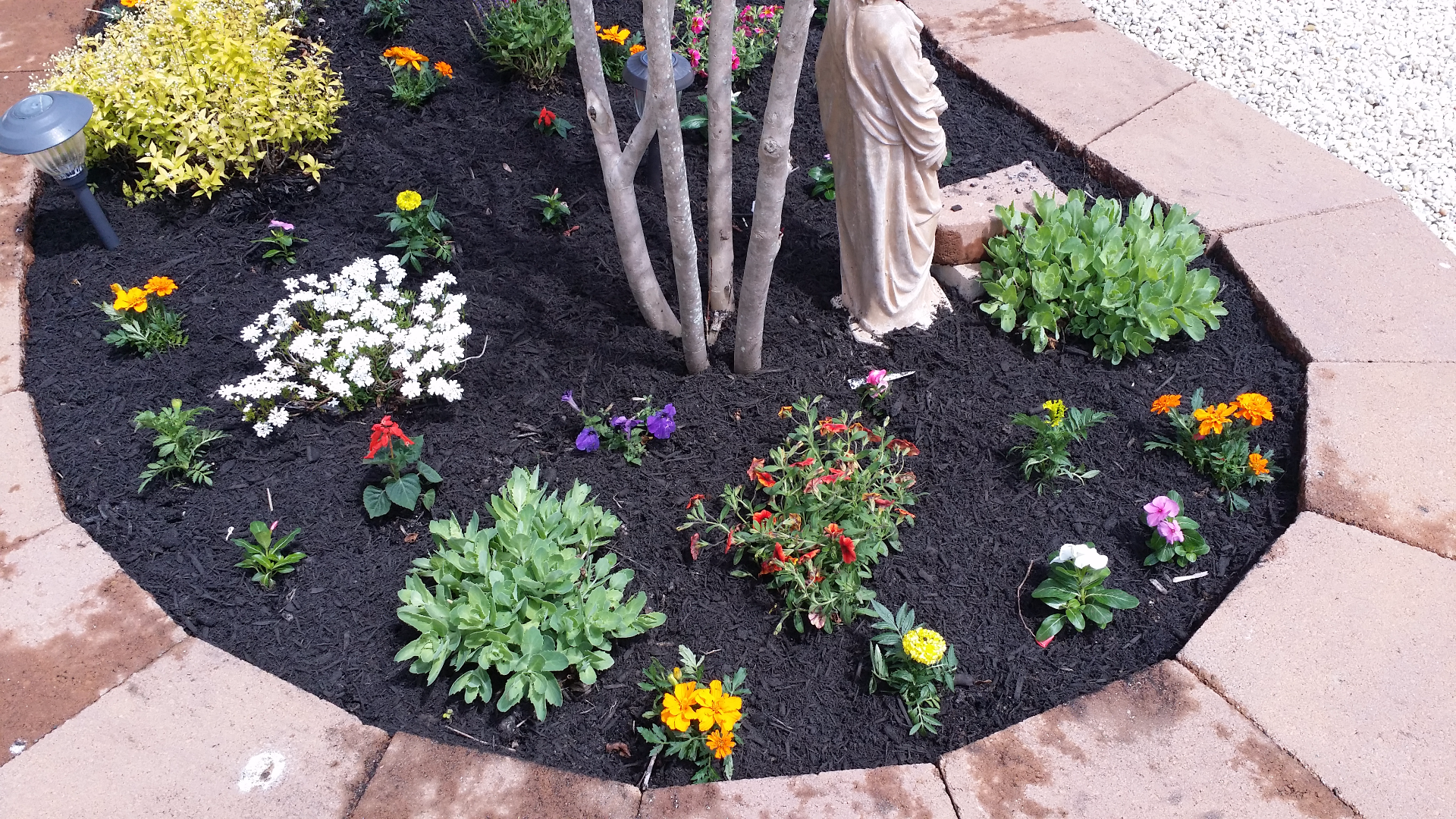 Spring /Summer flower and pavers