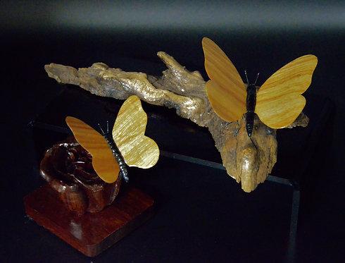 Canary Wood Butterflies