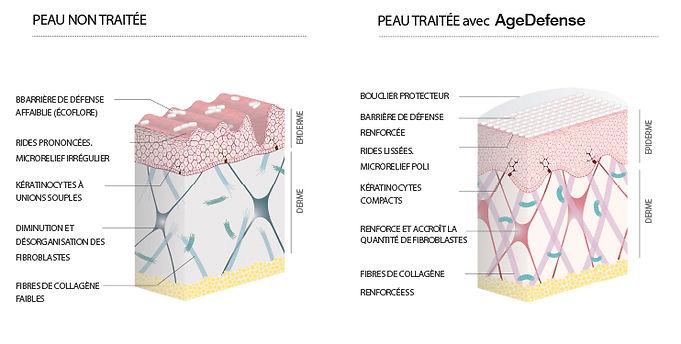 Grafico_resultados_tratamiento_FR.jpeg