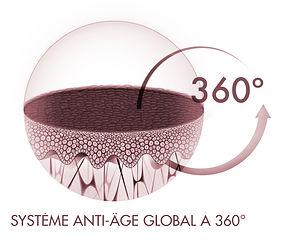 sistema_360-FR.jpg