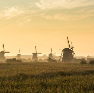 Morning in Kinderdijk, The Netherlands