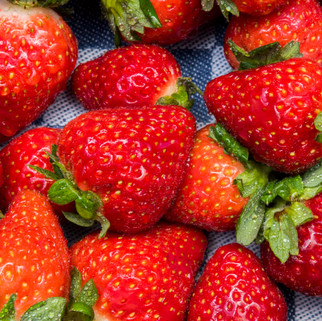 Strawberries, The Netherlands