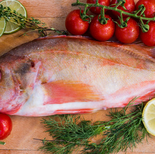 Fish wit Tomatoes, The Netherlands