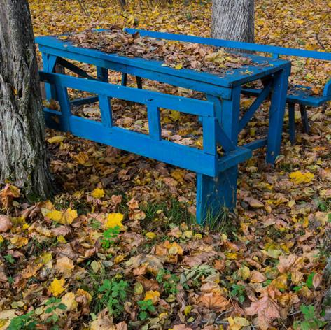 Autumn, Chernobyl, Ukraine