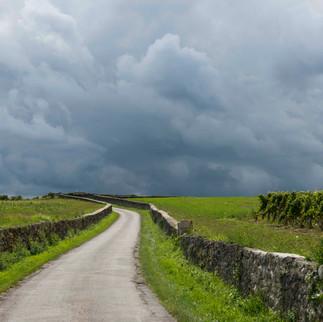 Road in Wine District Saint Emilion, France