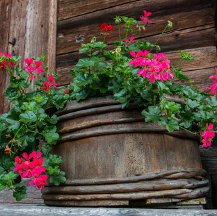 Flowerpot, Interlaken, Switzerland