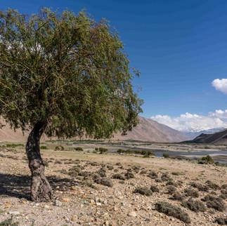 Panj river, Tajikistan