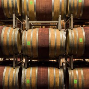 Wine Barrels, Italy
