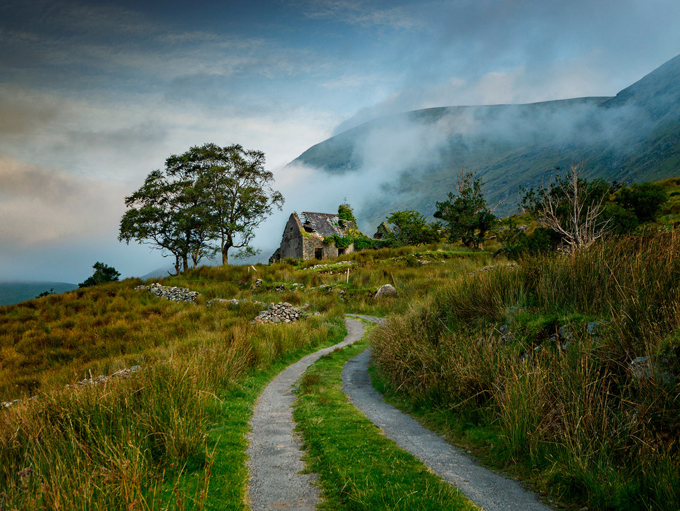 'Morning Mist' by Matthew Canning ( 11 marks )