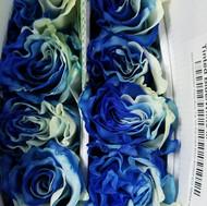 Tinted Blue/White