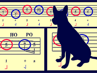 "How to *Really* Learn a Riff: Led Zeppelin's ""Black Dog"""