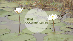 Films documentaires