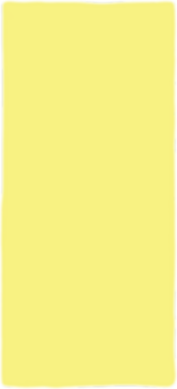 yellow background.png