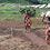 Thumbnail: Burundi
