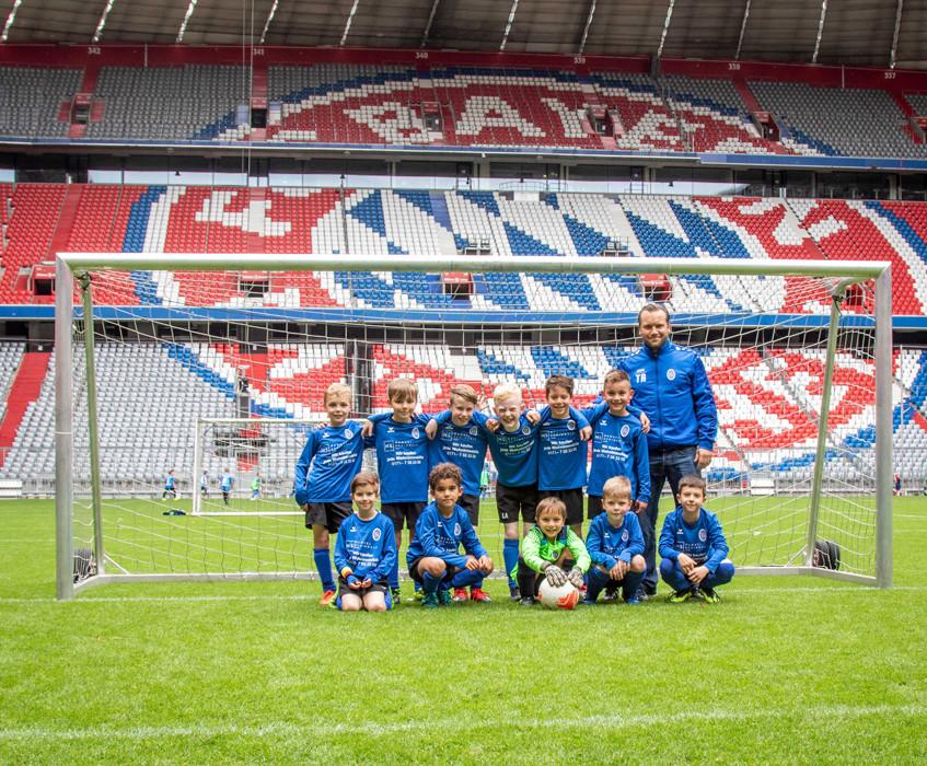 Phönixe in der Allianz Arena