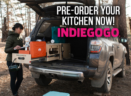 OUR PRE-ORDER SALE IS LIVE ON INDIEGOGO