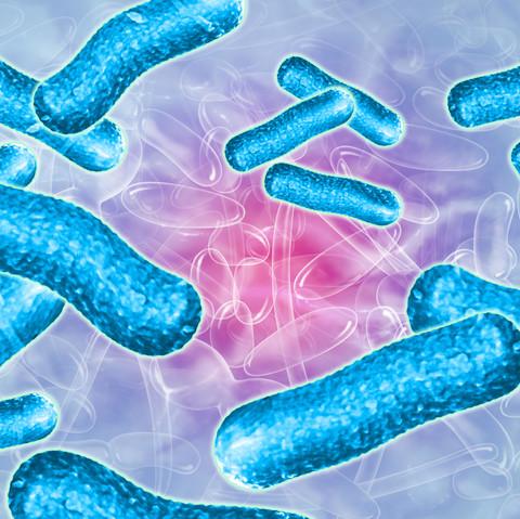 Probiotiques - Avant projet film 3D