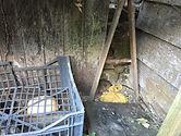 Traces de rats - Dératisation  - Dératiseur - anti souris anti rats Redon, Rennes, 35 et 44