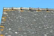 Démoussage d'une toiture à Guichen