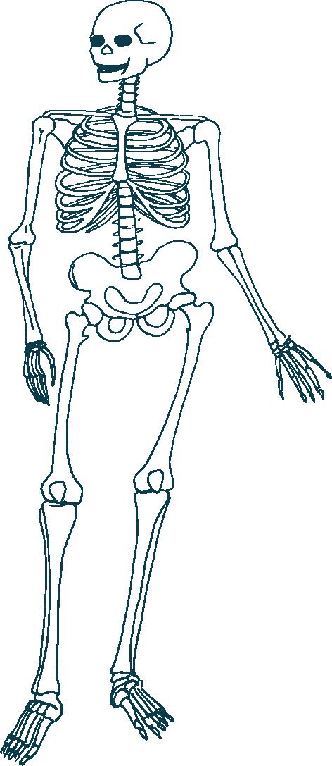 skeleton green.png
