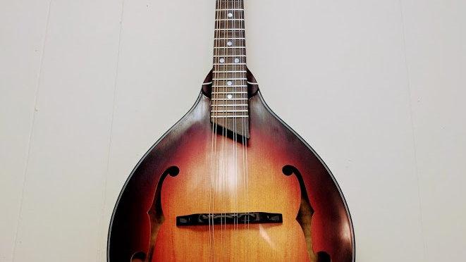 The Doberman - A style mandolin