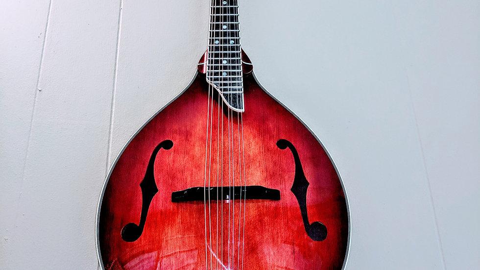 The Bloodhound Jazz Mandolin