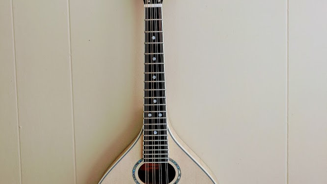 The Pup - A style mandolin