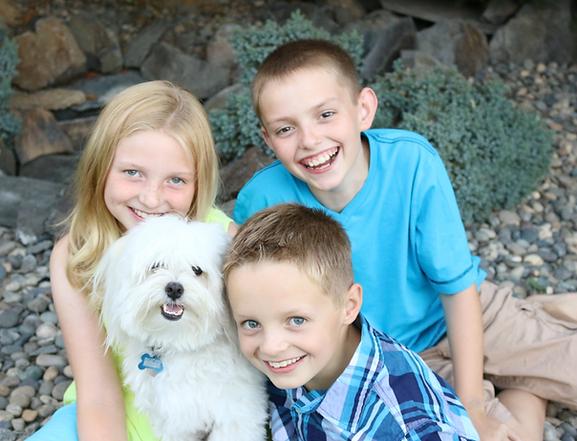 havanese coton de tulear dog puppy havaton Family