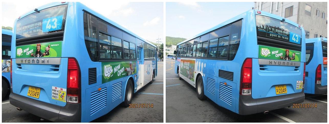 부산버스광고.jpg