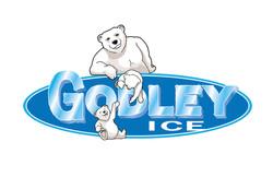 Godley Ice