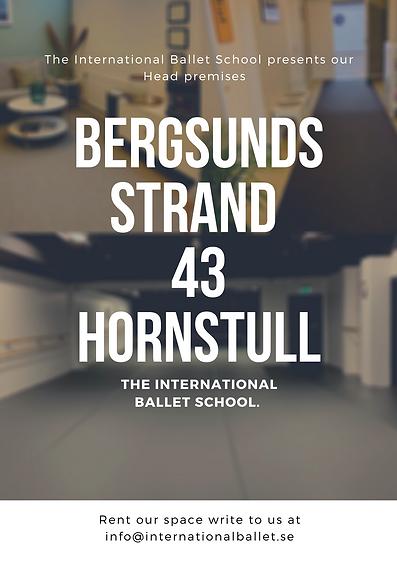 BERGSUNDS strand.png