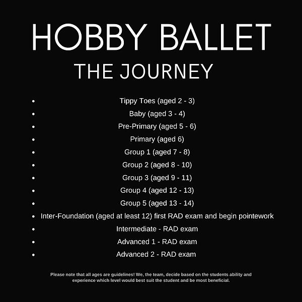 blog web insta HOBBY BALLET (1).png