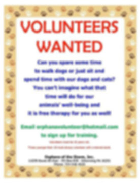 Volunteers Wanted.JPG