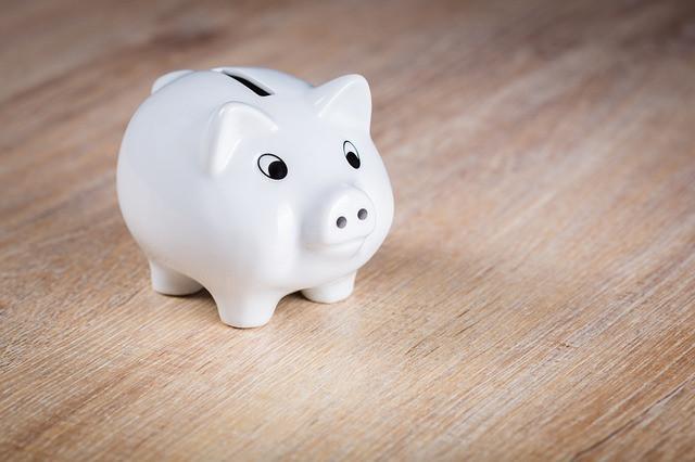 צמצום הוצאות - המדריך למצמצם הביתי