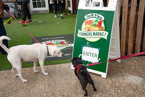 Dogs friendly market!