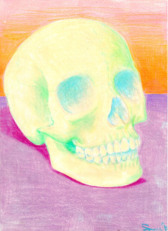 Still Life of a Skull